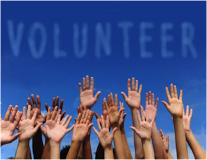 accounting software for volunteers